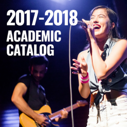 2017 - 2018 Academic Catalog Link Photo